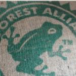 コーヒーにあるカエルマークの意味は?レインフォレスト・アライアンス認証【エシカル消費】